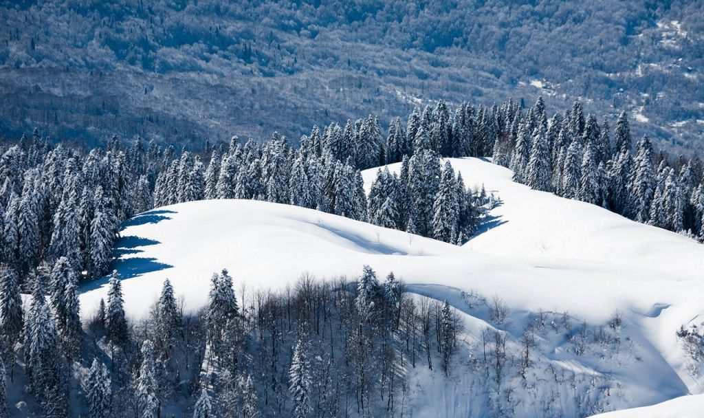 Зимний отдых в Адлере