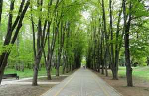 Ботанический сад, Краснодар