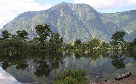 Телецкое озеро в Алтае