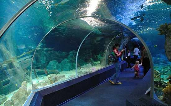 Адлерский Океанариум